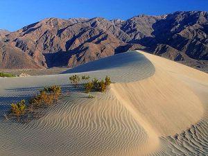 llenando con arena los huecos del terreno y vaciando los montículos de arena demasiado grandes